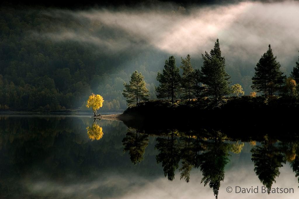 Beautiful photos/Nature 328837401_W35ZG-XL-1