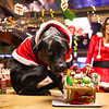 SmugMug Christmas party 2012 : 